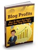 Thumbnail Blog Profits Guide w/ Minisite
